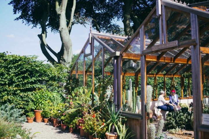 The-Botantic-Garden-at-Winterbourne-House-Garden-11-900x600.jpg